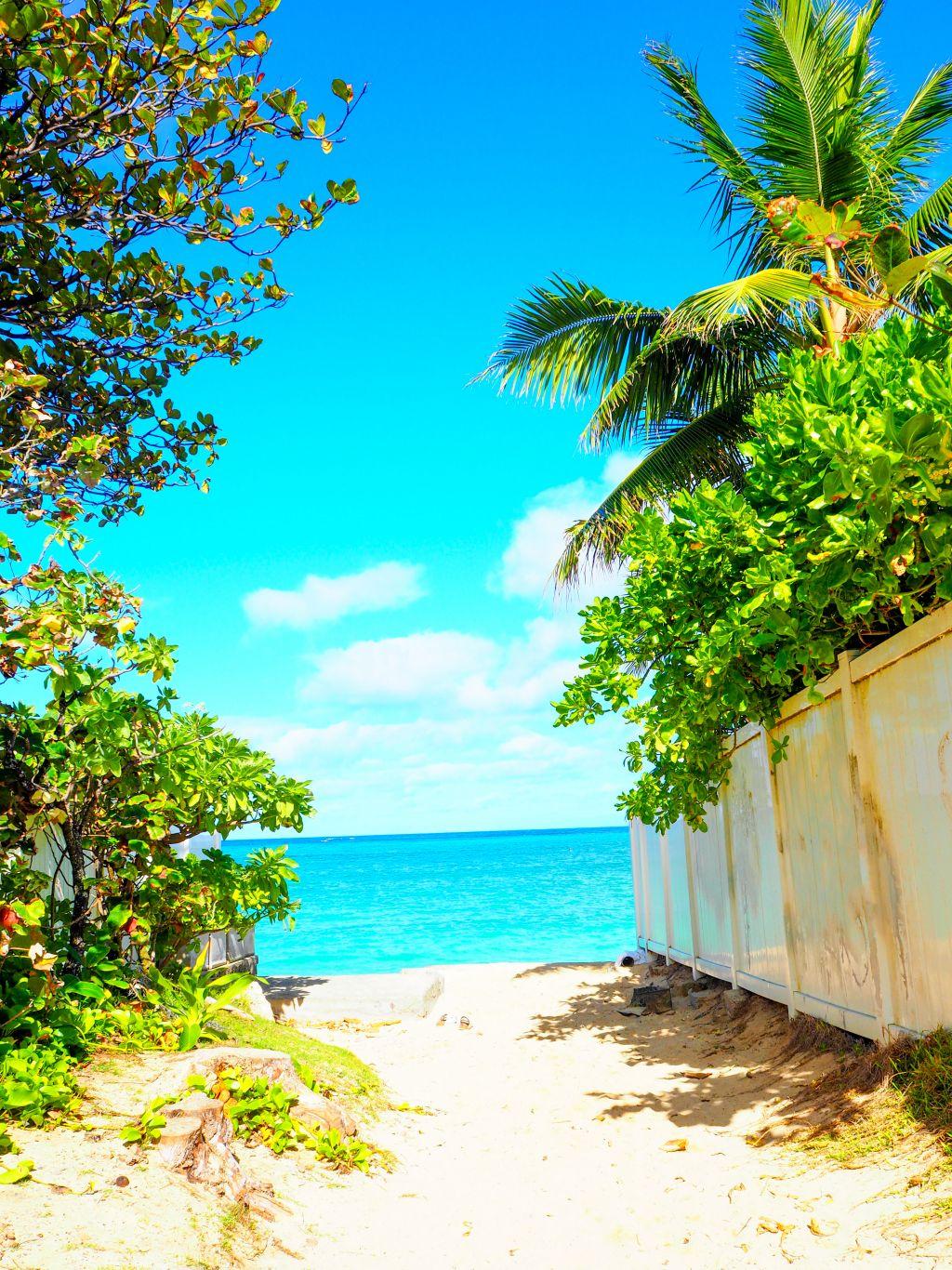 ラニカイビーチへ続く小道